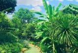 Bạn đang muốn tìm đất ở Đà Lạt vậy sao không thử cân nhắc tại Bảo Lộc nhỉ?