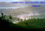 Hot quá! Biệt thự vườn Bảo Lộc, 500m2 giá chỉ 600tr, view sông Đại Nga.