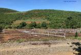 Nghỉ dưỡng ngay cạnh Sông, Hồ Cánh Bướm với 500m2 giá chỉ 600tr