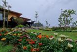 500-1500m2 đất Farmstay view sông Đại Nga tuyệt đẹp tại Nguyễn Văn Cừ Bảo Lộc chỉ 1,19tr/m2