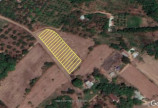 Đất nền phường Hắc Dịch, thành phố cảng Phú Mỹ giá chỉ 6,5tr/m2