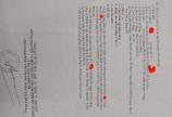Chủ Kẹt Quá Bán Gấp Miếng Đất Thổ Cư 317m2, Giá 6 Tỷ, MT Đường TH30 Xã Tân Hiệp HM