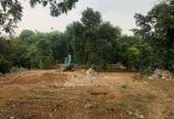 Bán đất Nhuận Trạch, Lương Sơn, Hòa Bình diện tích 1160m giá cho các nhà đầu tư.