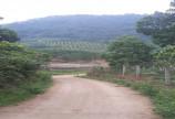 BÁN GẤP 17.930m đất RSX tai Kim Bôi, Hòa Bình giá đầu tư.