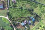 Bán 3200m có 400m thổ cư tại Vĩnh Tiến, Kim Bôi giá đầu tư mùa COVID