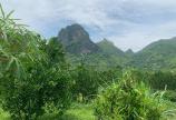 Bán đất Cao Phong Hòa Bình DT 4000m/2000 thổ cư.