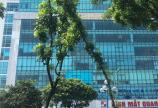 Cho thuê văn phòng tòa An Phú Building 26 Hoàng Quốc Việt, quận Cầu Giấy 0943898681