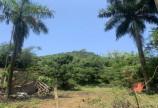 Bán đất thuộc thị trấn Bo Kim Bôi Hòa Bình DT 890m2 có 837m đất ở