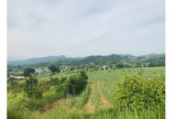 Bán đất Cao Pong Hòa Bình DT 2896m2 đang trồng full cam