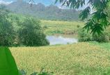 Bán đất Kim Bôi Hòa Bình DT 7500m2 có 1000 ont bám sông bôi
