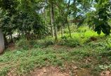 Bán đất Kim Bôi Hòa Bình DT1000m2 có 200đất ở