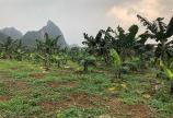 Bán đất Lương Sơn Hòa Bình DT 3708m Lô góc