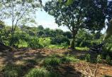 Bán đất Lương Sơn Hòa Bình DT 4500M2 có nhà cấp 4 và vườn cây aen quả