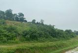 Bán đất Lương Sơn Hòa Bình 2824m2 có 400 ONT view cánh đồng siêu đẹp