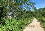 Bán đất Kim Bôi Hòa Bình DT 4490m2 full đất ở giá tốt.