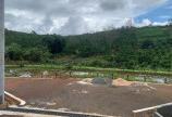 Đất nghỉ dưỡng đẹp tại Bảo Lộc cần bán