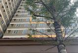 ⛳️⛳️ 20 tr/m2 Bán gấp căn hộ Xphome Star 2pn giá thấp nhất khu vực