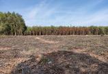 Đất Láng Dài-Đất Đỏ, Gần Sân Bay Lộc An, CAM KẾT GIÁ RẺ HƠN THỊ TRƯỜNG
