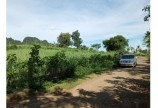 -Chỉ hơn 300 triệu sở hữu ngay mảnh đất nằm tại xã Mỹ Hòa tân lạc Hòa Bình với Diện tích 1600m đất trồng cây hàng năm
